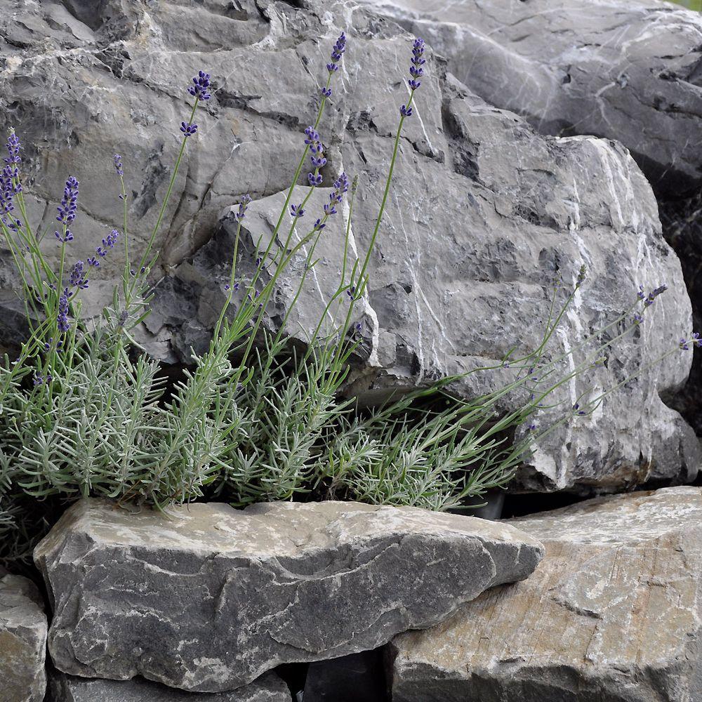 stalder gartenwelten ag - gartenbau, gartenpflege, stein, holz